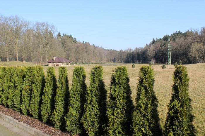VSK-Pohledsti-Dvoraci-CS26102.jpg